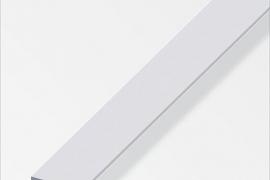 Latt 25x2mm anodeeritud alumiinium hõbe 2m