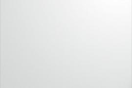 Plaat 600x1000x0,8mm alumiinium, pulbervärvitud valge