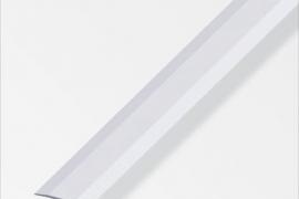 Liitekoha kate 6x25mm anodeeritud alumiinium hõbe 1m