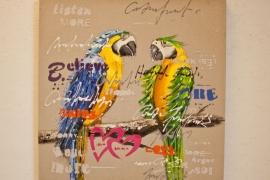 Õlimaal 80x80cm Papagoid xxx
