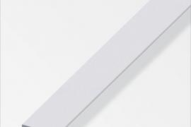 Latt 15x2mm anodeeritud alumiinium hõbe 1m